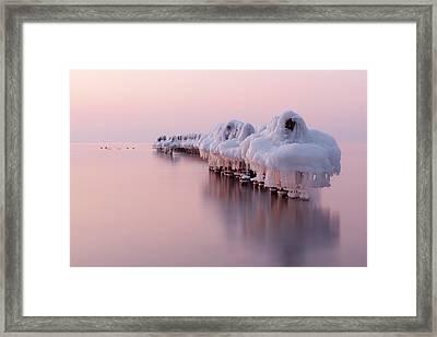 Dance Of White Swans Framed Print by Dmitry Kulagin