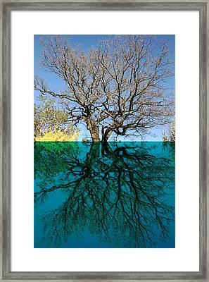 Dancers Tree Reflection  Framed Print