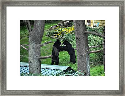 Dancing Bears Framed Print