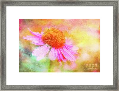 Dancing Coneflower Abstract Framed Print