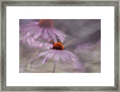 Framed Print featuring the photograph Dancing Cones by Gary Smith