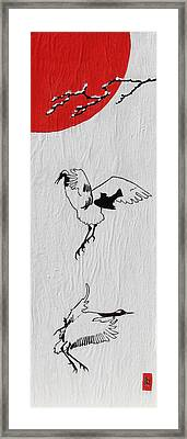 Dancing Cranes Framed Print by Stephanie Grant