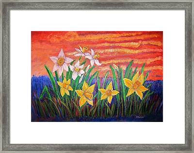 Dancing Daffodils Framed Print by Belinda Lawson