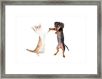 Dancing Doxie Dog And Kitten Framed Print