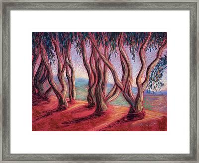 Dancing Eucalyptus Framed Print by Karin  Leonard