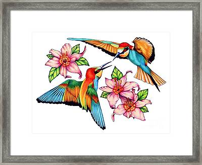 Dancing Bee-eaters  Framed Print