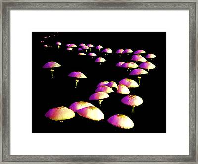 Dancing In The Dark Framed Print by John Foote
