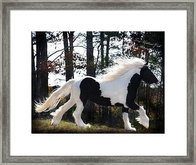 Dancing In The Light Framed Print