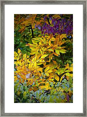 Dancing Framed Print by Michael Putnam