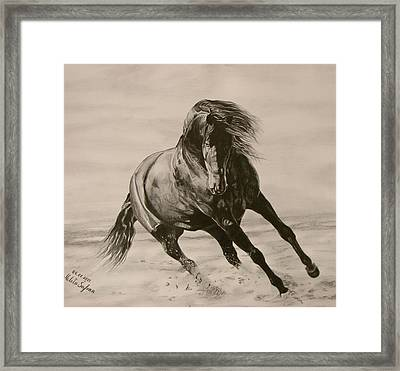Dancing Pace Framed Print