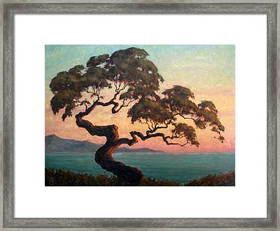 Dancing Pine Framed Print by Michael Orwick