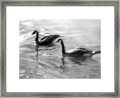 Dancing Reflections Framed Print