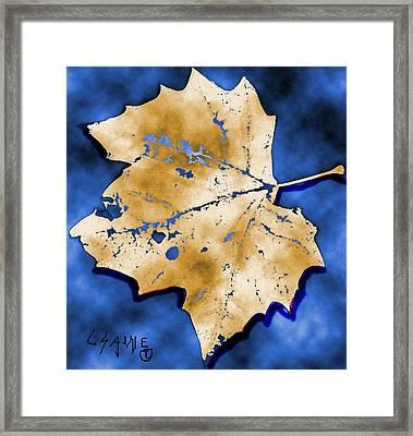 Dancing Tan Leaf Framed Print by Carolyn Saine