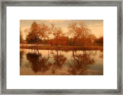 Dancing Trees - Lake Carasaljo Framed Print by Angie Tirado