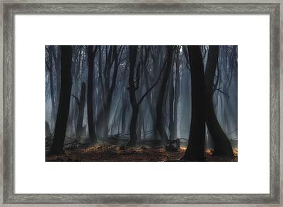 Dancing Trees Framed Print by Jan Paul Kraaij