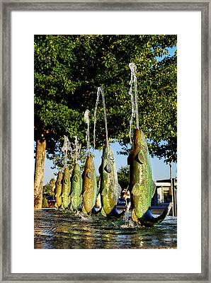 Dancing Trout Fountain Framed Print