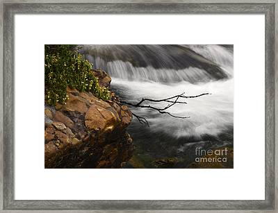 Dancing Waters 3 Framed Print by Bob Christopher