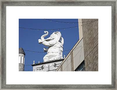 Dancing White Elephant Framed Print