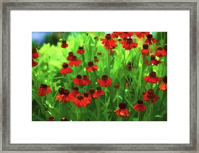 Framed Print featuring the photograph Dancing With Stars by Carol Kinkead
