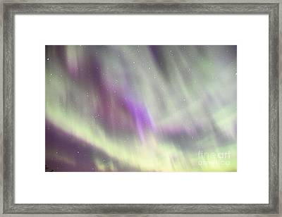 Framed Print featuring the photograph Dancing With The Stars by Larry Ricker