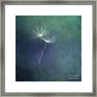 Dancing With The Wind Framed Print by Priska Wettstein