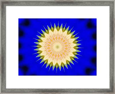 Dandelion Abstract2 Framed Print by Johann Todesengel