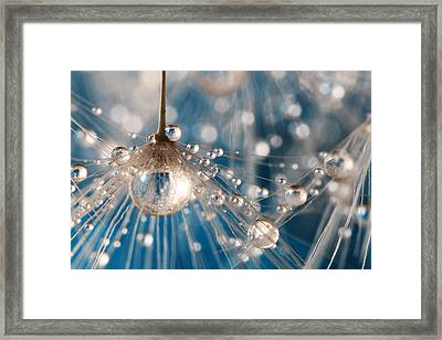 Framed Print featuring the photograph Dandelion Blue Sparkling Drops by Sharon Johnstone