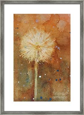 Dandelion Clock 1 Framed Print