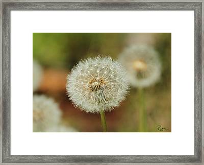 Just Blow To Tell The Time Framed Print
