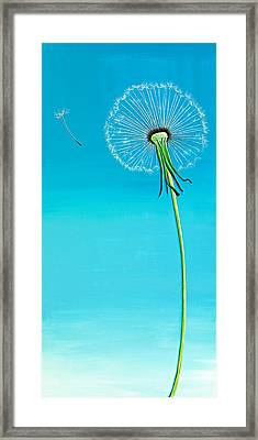 Dandelion Framed Print by David Junod