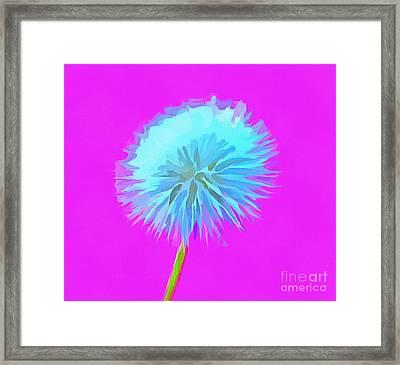 Dandelion Flair Framed Print by Krissy Katsimbras