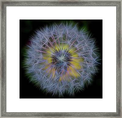 Dandelion Glow II Square Framed Print by Terry DeLuco