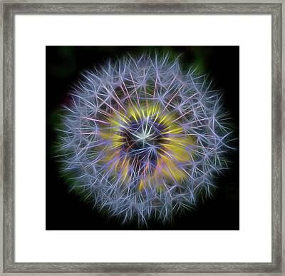 Dandelion Glow Square Framed Print by Terry DeLuco
