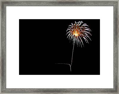 Dandelion In The Sky Framed Print