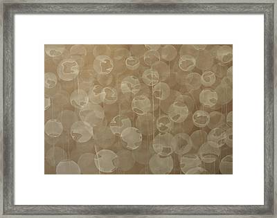 Dandelion Framed Print by Jitka Anlaufova