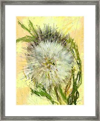 Dandelion Sunshower Framed Print
