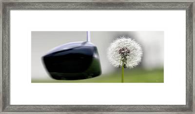 Dandelion Tee Framed Print