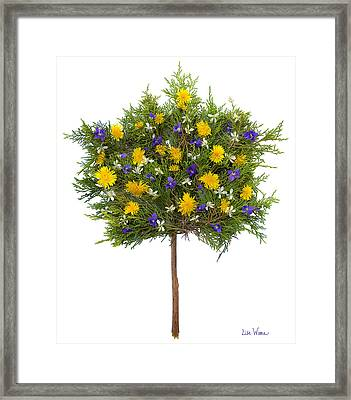 Framed Print featuring the photograph Dandelion Violet Tree by Lise Winne