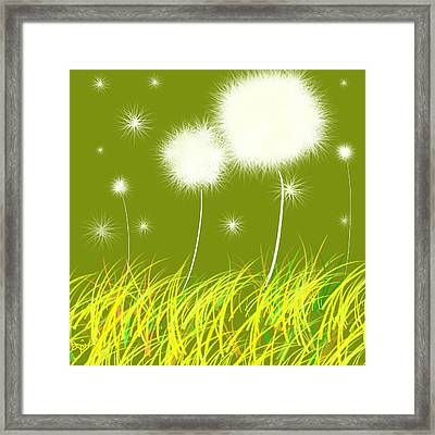 Dandelions Are Free Framed Print