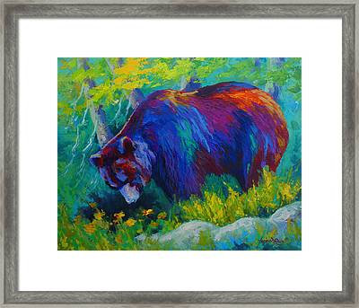 Dandelions For Dinner - Black Bear Framed Print by Marion Rose