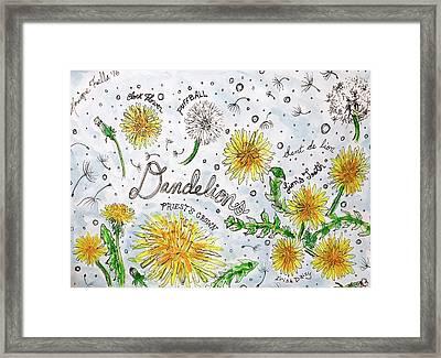 Dandelions Framed Print