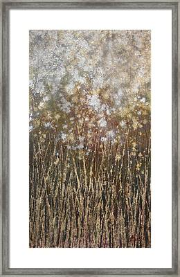 Dandelions Framed Print by Steve Ellis