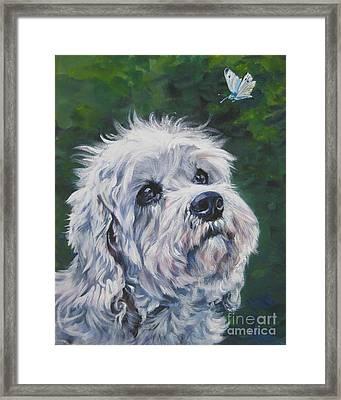 Dandie Dinmont Terrier Framed Print by Lee Ann Shepard