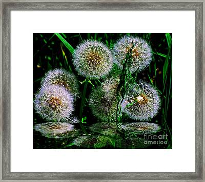 Framed Print featuring the photograph Dandies  by Elfriede Fulda