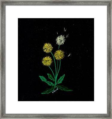 Dandy Lions Framed Print by Diane Frick