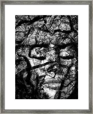 Daphne Sacrifice Framed Print