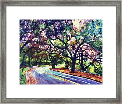 Dappled Lane Through The Arroyo Framed Print