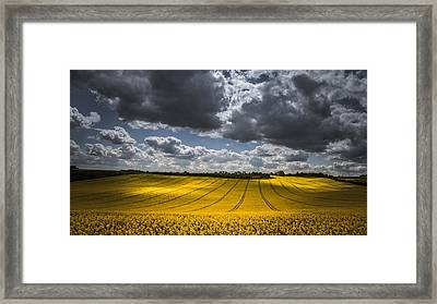 Dappled Sunlight On The Rapeseed Field Framed Print by Chris Fletcher