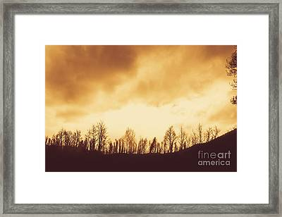 Dark Afternoon Woodland Framed Print by Jorgo Photography - Wall Art Gallery
