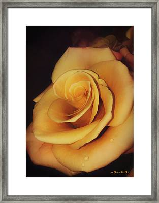 Dark And Golden Framed Print